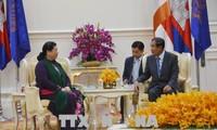 柬埔寨领导人高度评价与越南的合作