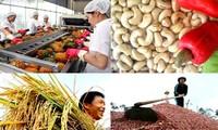 越南农业可持续发展伙伴会议举行