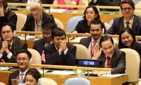 越南高票当选联合国安理会非常任理事国