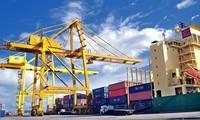 2019年前11个月 越南贸易顺差90多亿美元