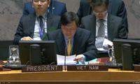 越南主持联安理会讨论也门局势的会议