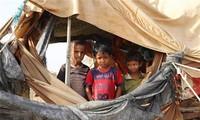 越南呼吁也门各方切实执行停火令