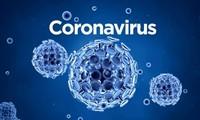 越南无新增新冠肺炎确诊病例 世界各国努力击退新冠肺炎大流行病