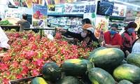 越南与澳大利亚讨论新冠肺炎疫情过后的贸易投资合作