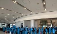 将340名在日本的越南公民接回国