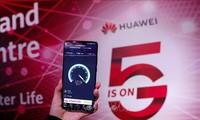 东盟和中国推动数字经济合作