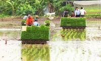 河内郊区农民大力推动农业生产中的机械化
