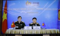 东盟防务高官工作组视频会议举行