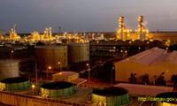 金瓯省加强与各国和地区投资接洽