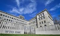 越南支持并高度评价世贸组织的中心作用