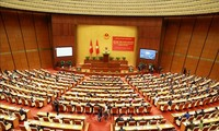 研究学习和贯彻落实与宣传越共十三大决议全国视频会议