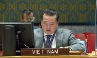 越南对索马里局势出现积极进展表示欢迎