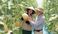兴安省集中推动农业结构重组