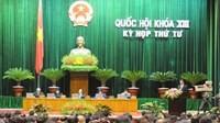 Parlament diskutiert Gesetze für Genossenschaft und Steuerverwaltung