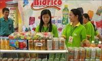Unternehmen in Ho Chi Minh Stadt nach dem Tetfest