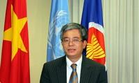 Zusammenarbeit der ASEAN bei Rettungsarbeit auf dem Ostmeer