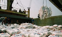 Export von land- und forstwirtschaftlichen Produkten am Grenzübergang Lao Cai