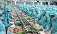 Verbesserung der Wettbewerbsfähigkeit vietnamesischer Meeresprodukte