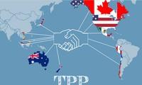 TPP-Mitgliedsländer veröffentlichen Abkommen im Wortlaut