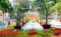 700.000 Besucher beim Blumenfestival in Ho Chi Minh Stadt