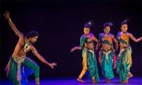 Ausländische Künstler treten in Vietnam auf