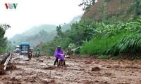 Aufräumarbeit nach dem Taifun Dianmu