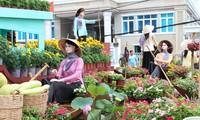 Hunderttausende Gäste in den Blumenstraßen in Can Tho erwartet