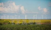 Vietnam und Deutschalnd arbeiten bei nachhaltiger Energie zusammen