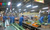 Unternehmer und Unternehmen Vietnams integrieren sich in der globalen Wirtschaft