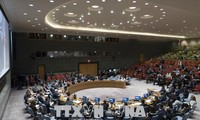 UN-Resolution zu Gewalt in Nahost gescheitert