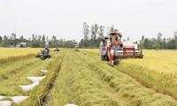 Nachhaltige Entwicklung der Genossenschaften durch Zusammenarbeit