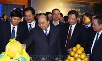 Premierminister Nguyen Xuan Phuc nimmt an Investitionskonferenz in Hoa Binh teil
