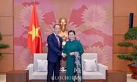 Vizeparlamentspräsidentin Tong Thi Phong empfängt Direktor der Weltgesundheitsorganisation im Westen von Pazifik