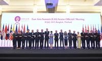 Vietnam nimmt an hochrangiger Konferenz der ASEAN+3 und Ostasiens teil