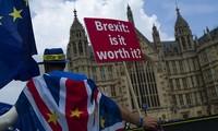 Verstärkte Meinungsverschiedenheiten innerhalb der britischen Regierung über Brexit