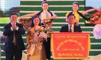 Abschluss des Kulturfestivals der Thai