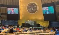 Vietnam nimmt an UN-Vollversammlung über Ozeane und Meeresgesetze teil