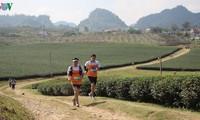 Mehr als 3.000 Läufer nehmen am Marathon teil