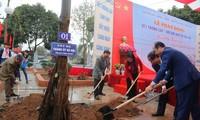 Fest zum Baumanpflanzen wird landesweit gestartet
