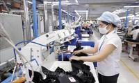 Europäischer Rat billigt letzte Hürde für EVFTA