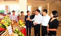 "Bac Giang will Wettbewerb ""Spezielles Kulturprodukt"" der Provinz starten"