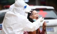 Vietnam brauchte wenig Aufwand für Bekämpfung der Pandemie