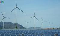 Umsetzung des Projektes der erneuerbaren Energie in Ninh Thuan