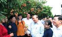 Premierminister Nguyen Xuan Phuc ist zu Gast beim Export von Litschi