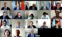 Vietnam ruft auf Sitzung des Weltsicherheitsrats zur Solidarität gegen Terror in Afrika auf