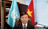 Vietnam und Indonesien berichten gemeinsam über Lage in Zentralafrika