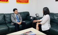25-jährige Beziehungen zwischen Vietnam und den USA: Großer Schritt für Zusammenarbeit in Handel und Wirtschaft