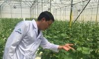 Die Agrarprodukte aus Binh Thuan suchen den Zugang zu Großmärkten