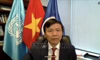 Vietnam legt großen Wert auf internationale Gesetze zur Bewahrung des Friedens und der Sicherheit