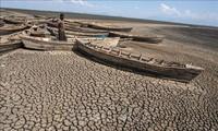 Dialog zwischen ASEAN und EU über Umwelt und Klimawandel